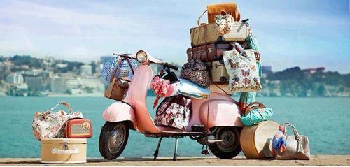 Check luggage limits