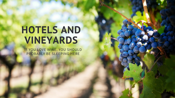 a-header-vineyards-2
